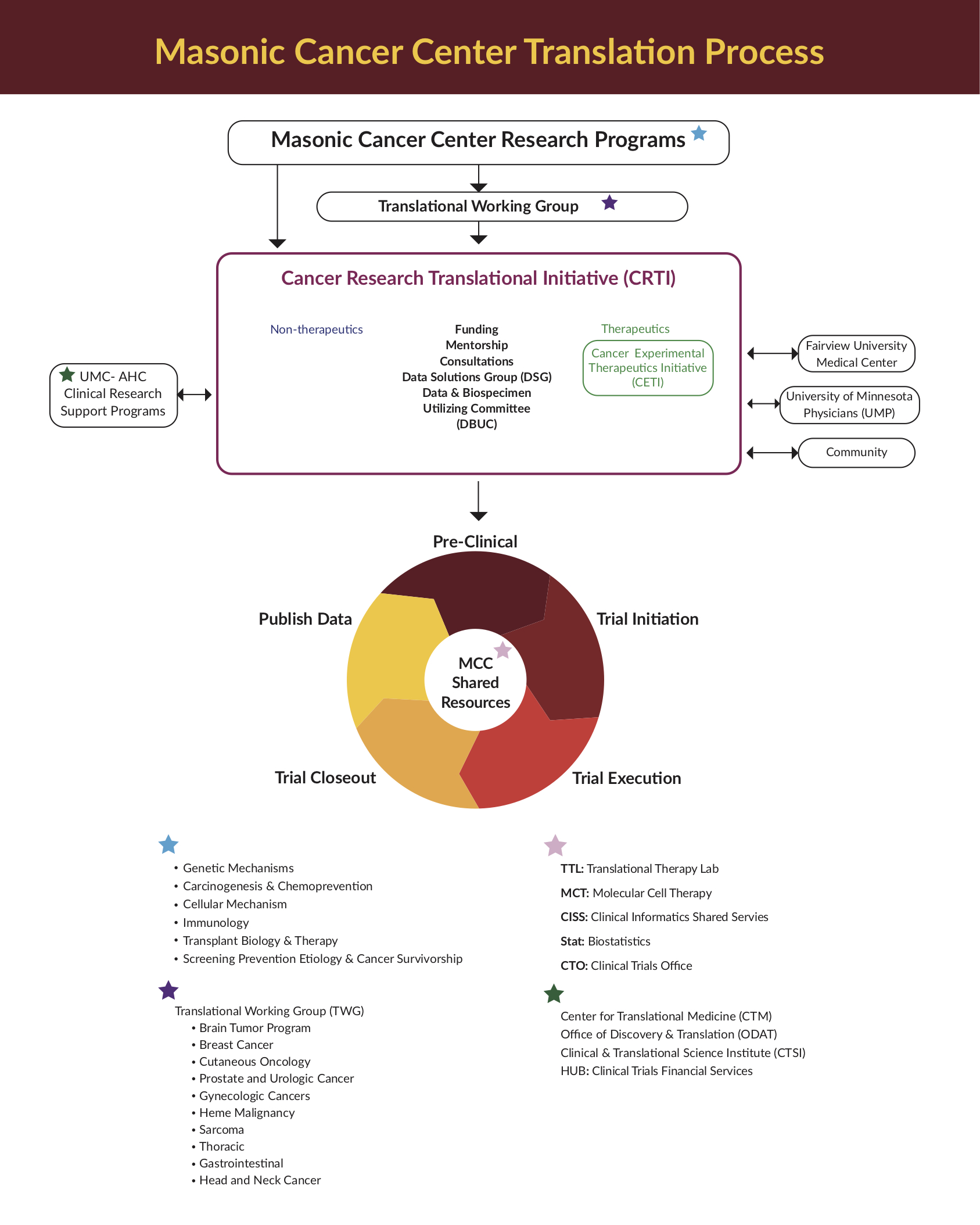 Masonic Cancer Center Tranlastion Process infographics